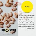 خواص پسته در پروتئین بار